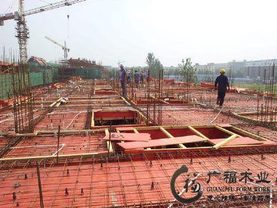 广东建筑模板工地