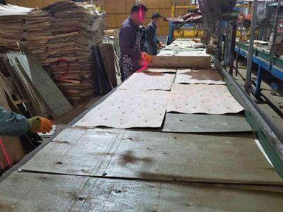 广西胶合板排版车间
